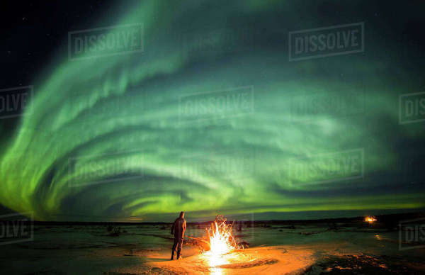 Man stands next to a campfire while northern lights dance overhead, Delta River, Delta Junction, Interior Alaska, USA Rights-managed stock photo
