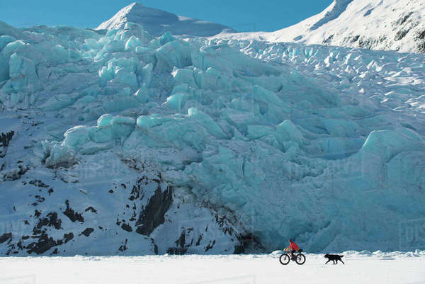 Woman Bicycling On Portage Lake With Her Dog Following Behind And Portage Glacier In The Background, Chugach National Forest, Southcentral Alaska, USA Rights-managed stock photo