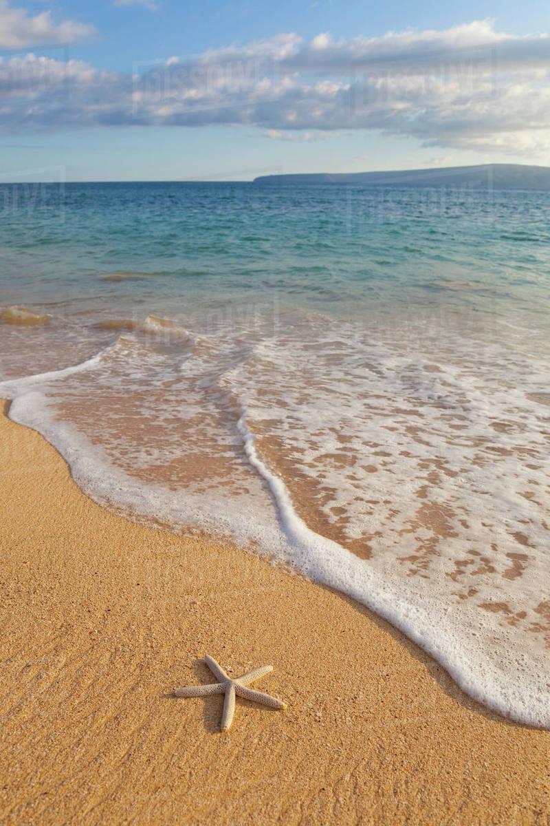 64390c6b36 Hawaii