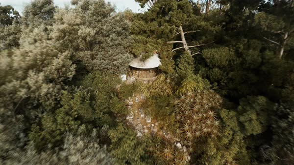 Aerial view of observation shelter on lushly forested mountain Royalty-free stock video