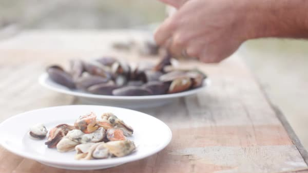 Removing freshly cooked mussels from shells Royalty-free stock video