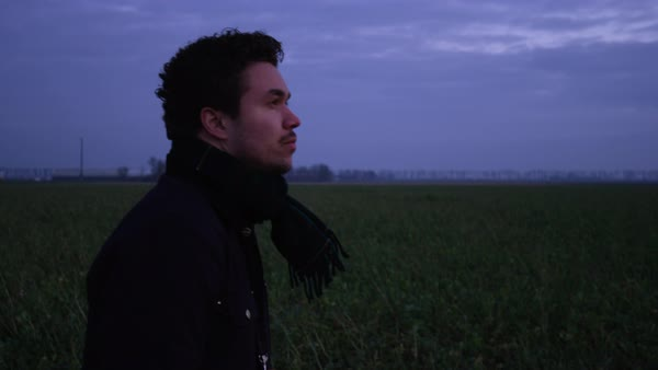 Hand-held shot of a man looking around a field at dawn Royalty-free stock video