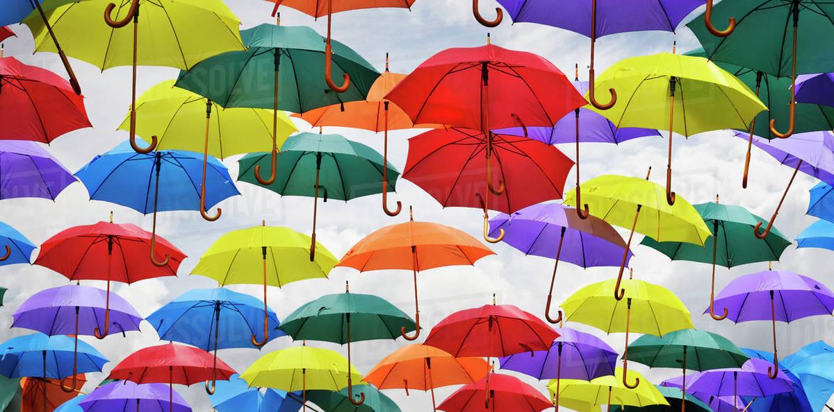 View Of Multiple Umbrellas On Display In Bath England Uk