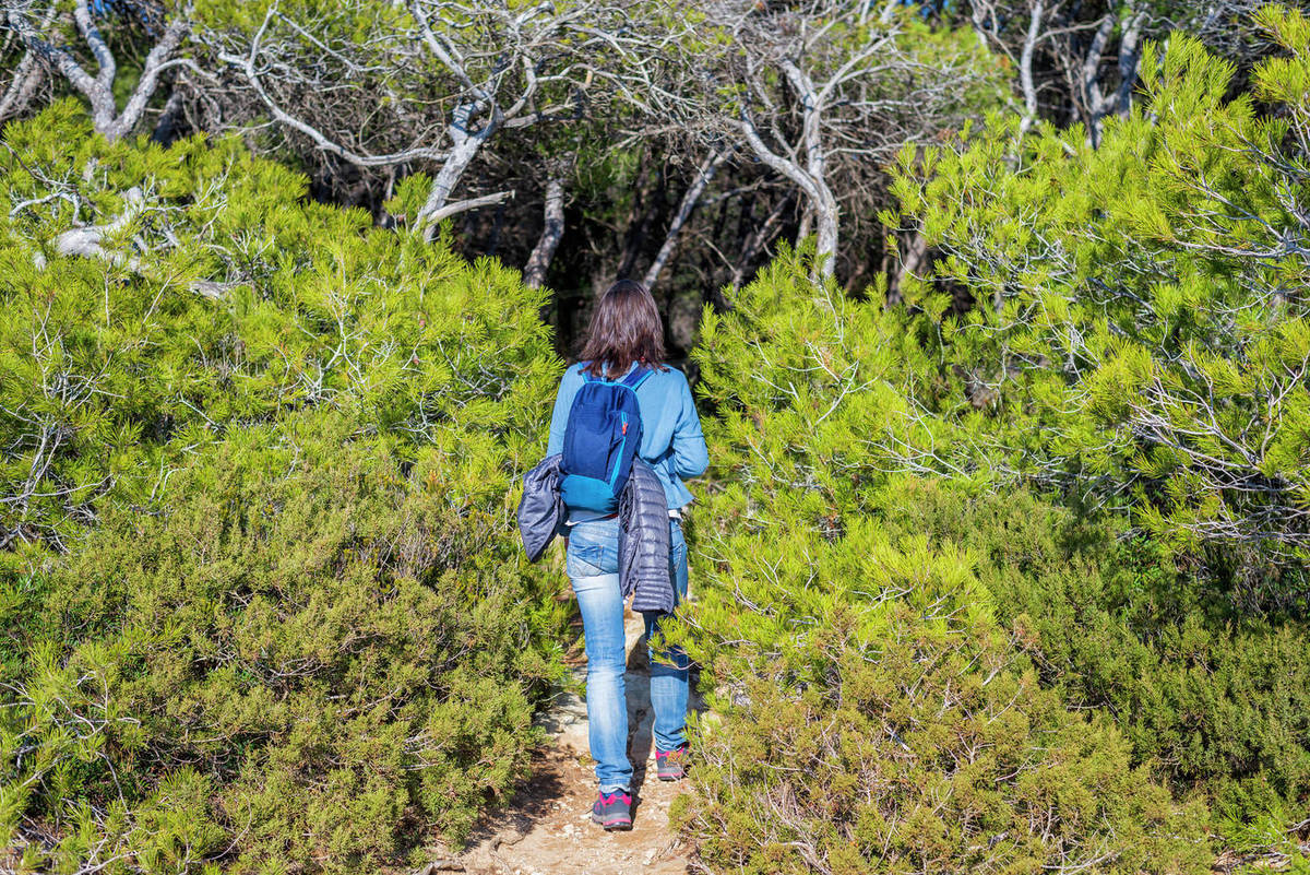 Rear view of a backpacker woman walking into the forest Royalty-free stock photo