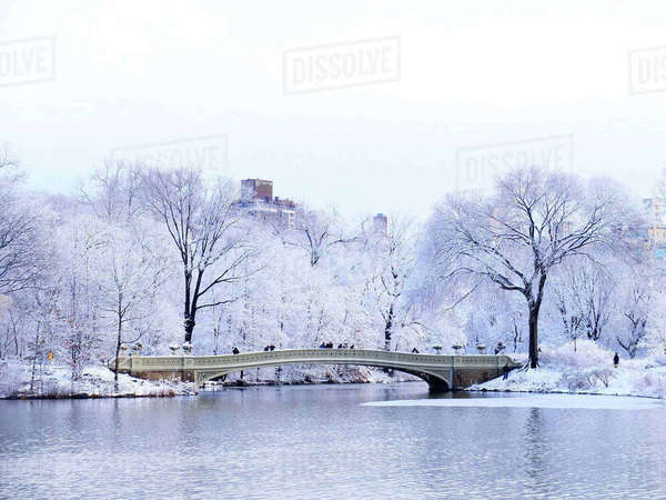 Bow bridge over lake at central park during winter Royalty-free stock photo