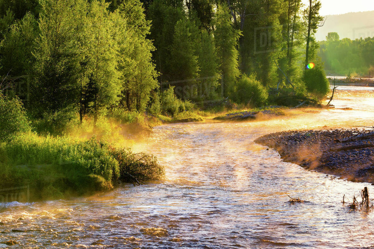 The Snake River  in Jackson Hole, Wyoming Royalty-free stock photo