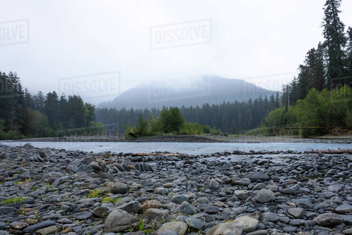 Client Request - River Images Royalty-free stock photo