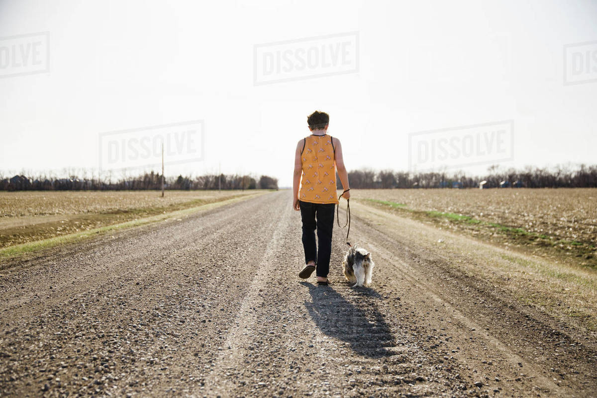 Boy and dog walking on a road in the country with a clear sky. Royalty-free stock photo