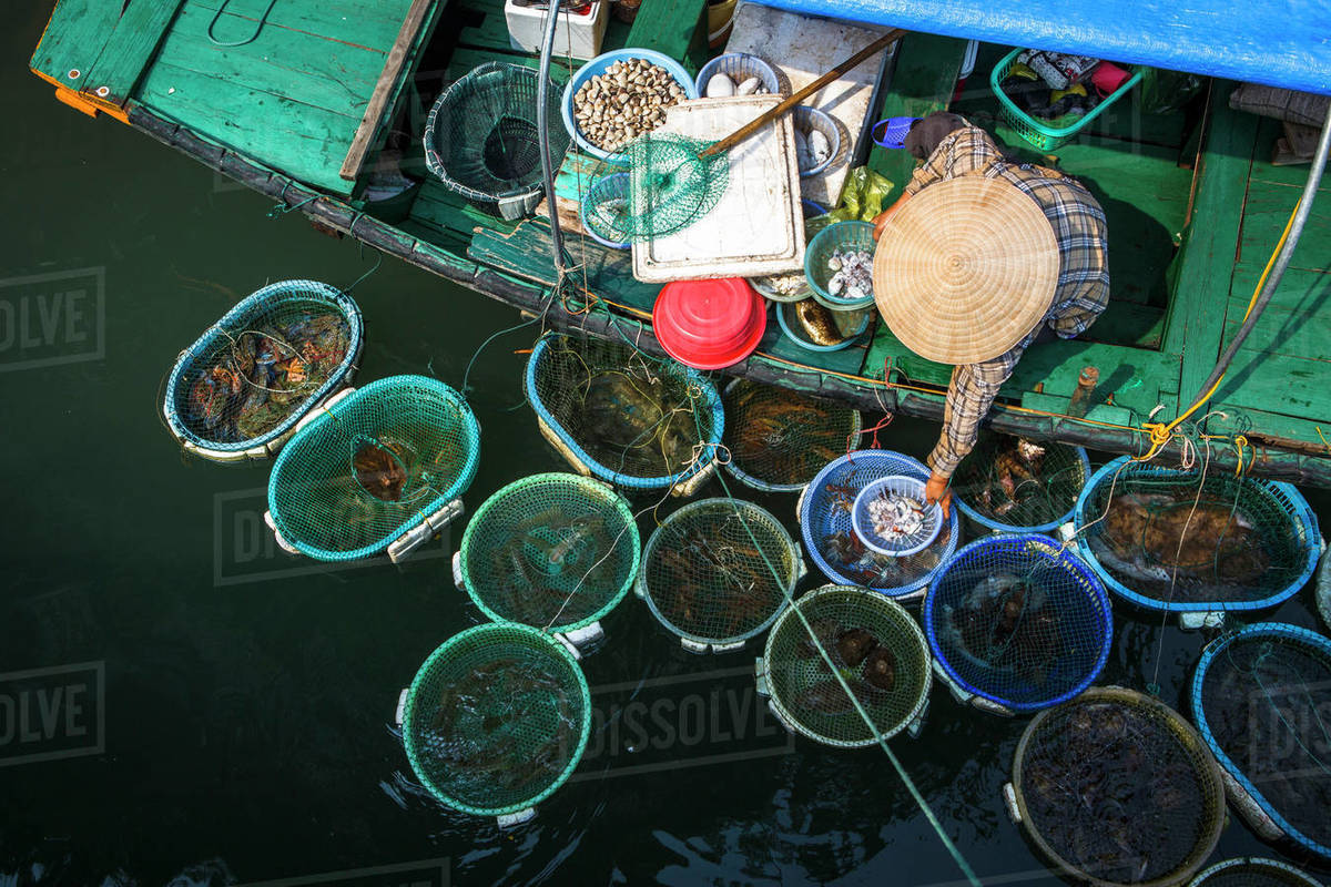 A Seafood Vendor Works From a Boat in Halong Bay, Vietnam Royalty-free stock photo