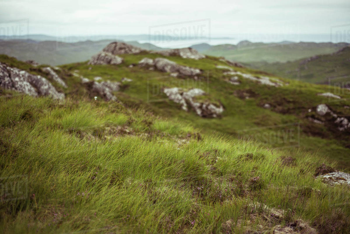 Landscape view remote scotland highlands coast and grass Royalty-free stock photo