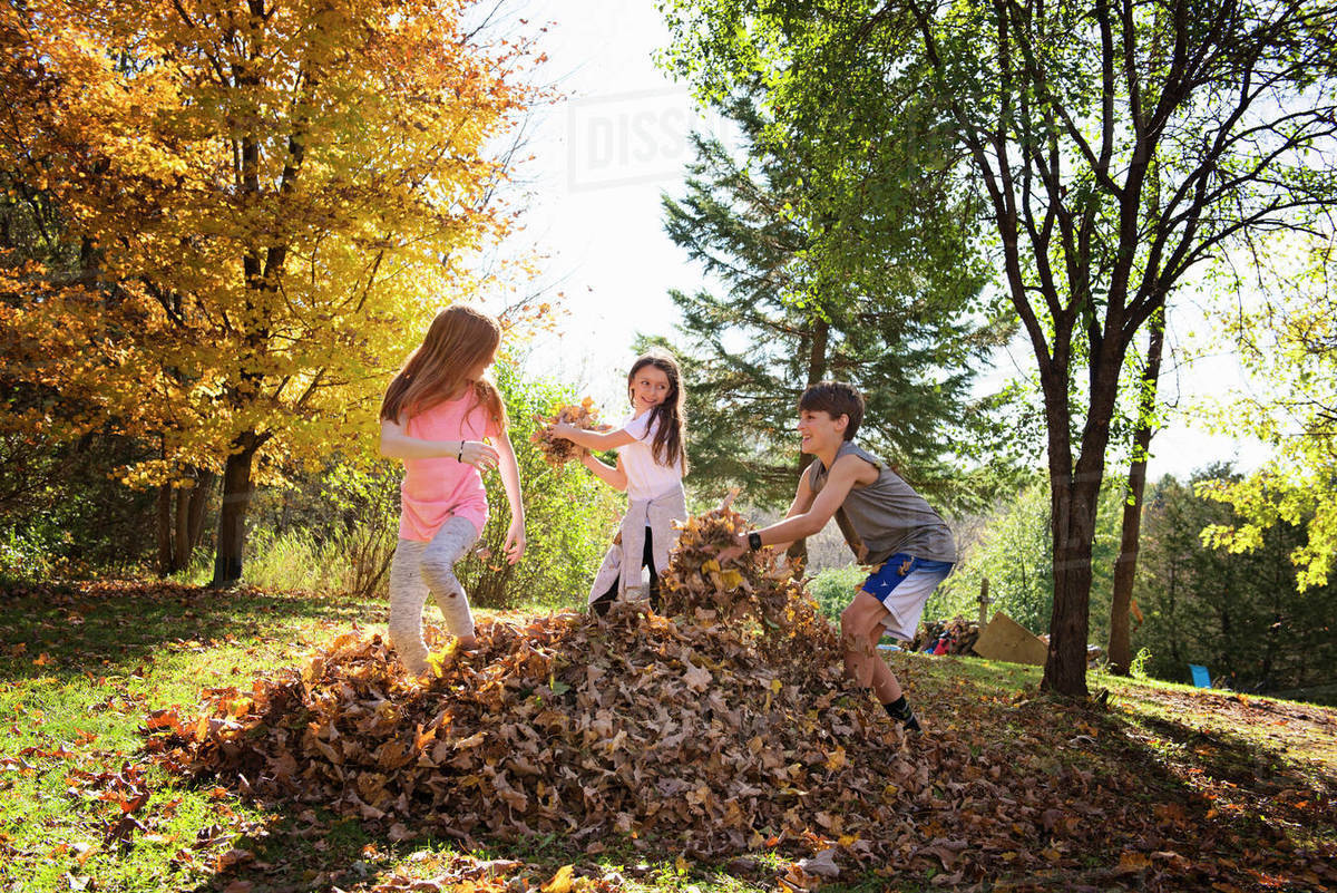 Three Young Children Playing in Fall Leaves Royalty-free stock photo
