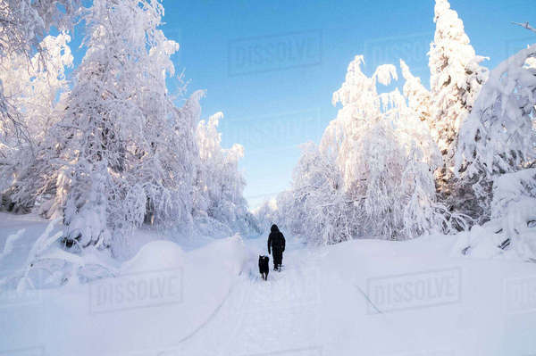 Rear view of man walking with dog on snow covered field against sky Royalty-free stock photo