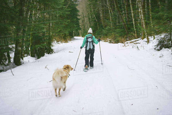 Rear view of woman with dog skiing on snow covered field Royalty-free stock photo