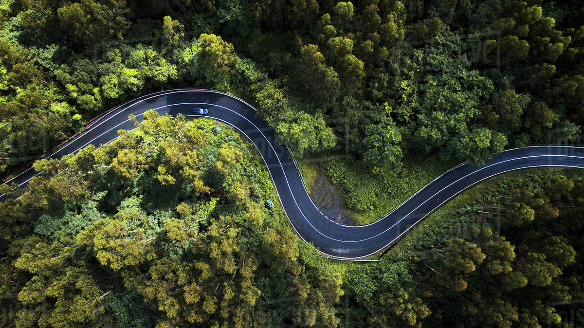 Aerial view of winding road amidst trees in forest - Stock ...