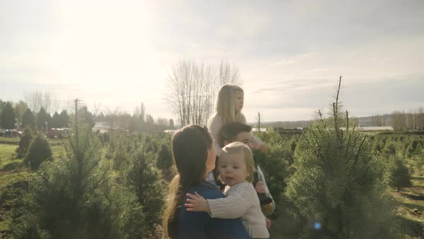 Push-out shot of a family walking at a tree farm Royalty-free stock video
