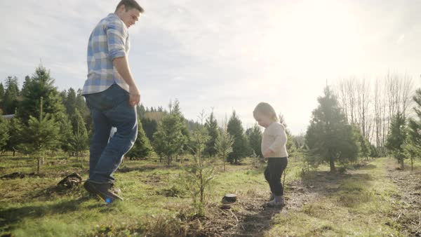 Full shot of a father watching over his child at a tree farm Royalty-free stock video