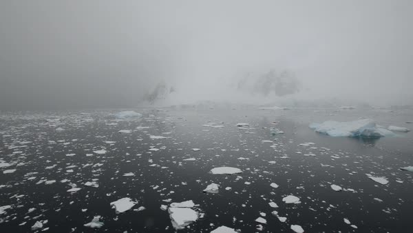 Wide shot of icy water in Antarctica Royalty-free stock video