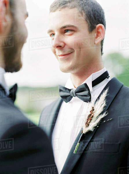 Sweden, Grooms at gay wedding Royalty-free stock photo