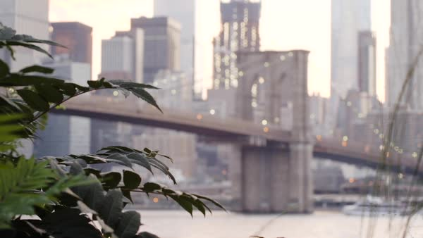 An establishing shot of New York City's Brooklyn Bridge at sunset Royalty-free stock video