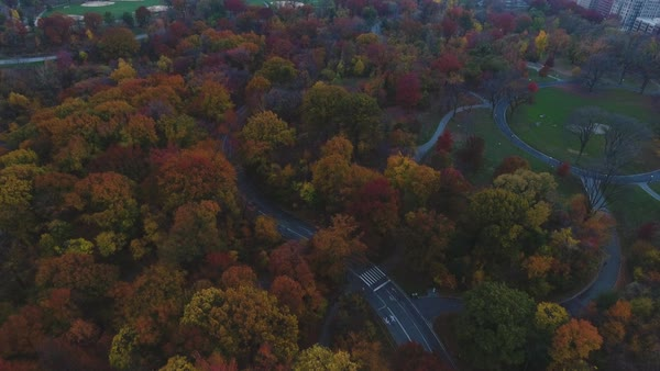 Aerial footage over New York City's Central park Royalty-free stock video