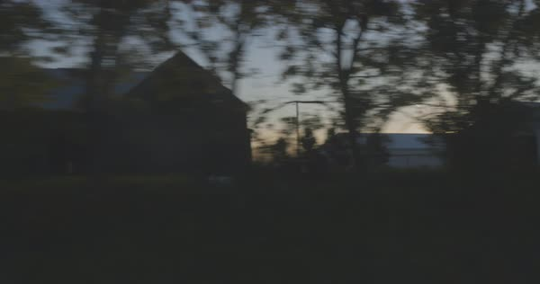Point-of-view shot of trees from a moving car Royalty-free stock video