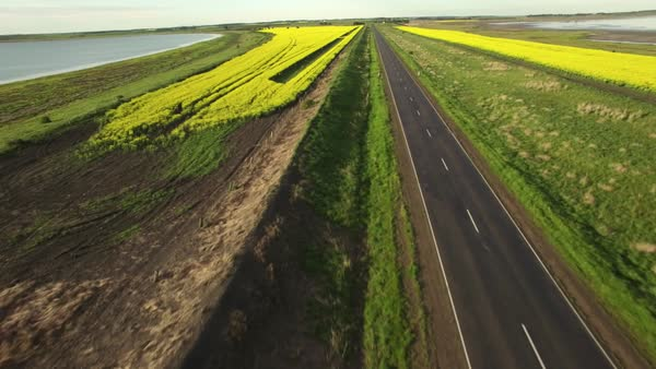 Fast forward flight over rural road and yellow canola field slowly rising high up revealing the horizon Royalty-free stock video