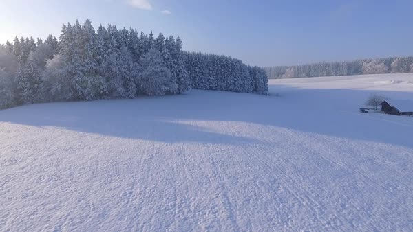 Aerial of a snowy forest Royalty-free stock video