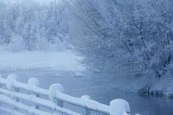 Fence and snowy trees over remote river Royalty-free stock photo