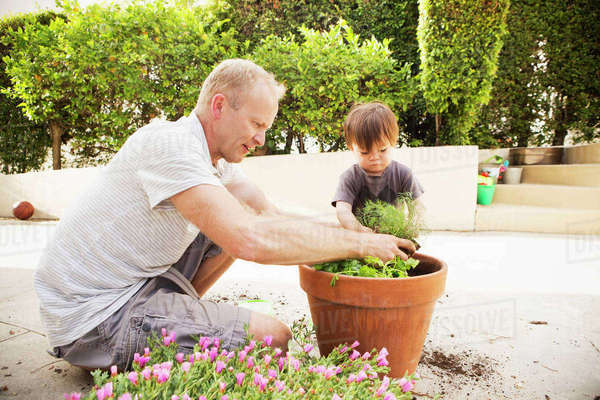 Father and son putting plant in pot Royalty-free stock photo