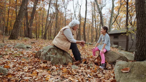 Grandmother and granddaughter playing with autumn leaves near cabin Royalty-free stock video