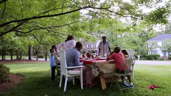 Extended family eating at picnic under tree Royalty-free stock video
