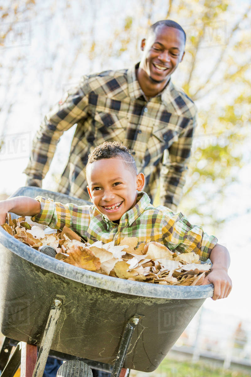 Father Pushing Son In Wheelbarrow In Autumn Leaves Stock Photo