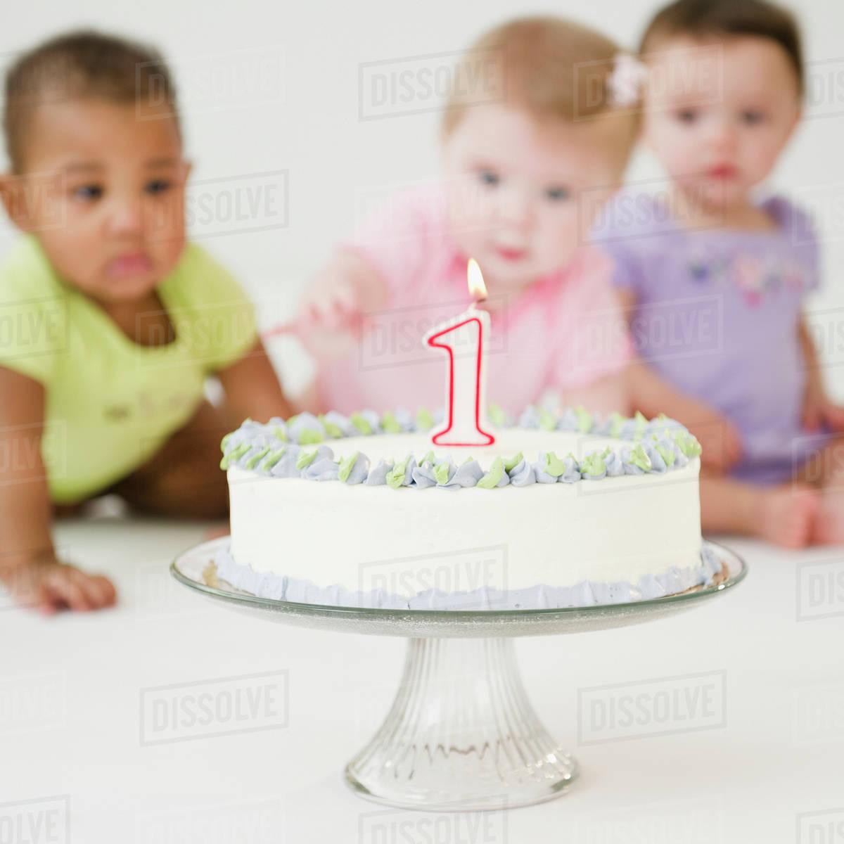 Fantastic Babies Looking At First Birthday Cake Stock Photo Dissolve Funny Birthday Cards Online Amentibdeldamsfinfo