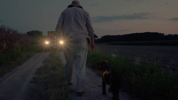 Static shot of a farmer walking to a pickup truck with his dog Royalty-free stock video