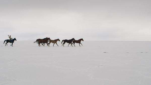 Horses running from left to right with cowboys following waving hat on the Bonneville Salt Flats in Utah. Royalty-free stock video