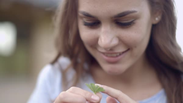 Woman looking at four leaf clover Royalty-free stock video