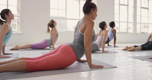 Yoga class group of women exercising healthy lifestyle in fitness studio yoga downward dog chaturanga poses Royalty-free stock video
