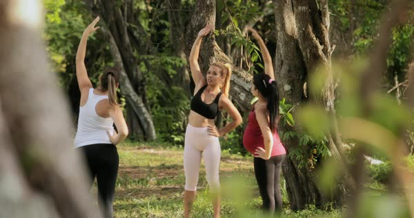 Pregnant women at an outdoor prenatal yoga class Royalty-free stock video