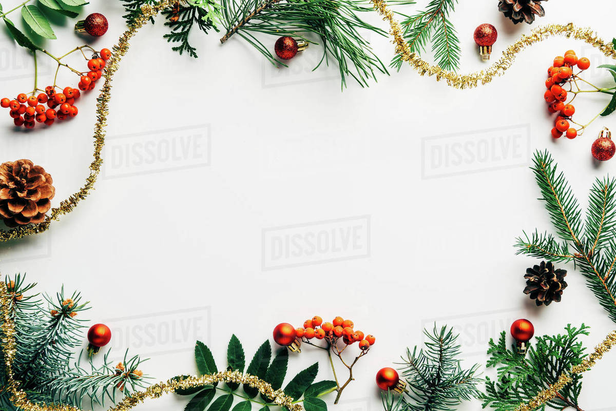 Flat Lay With Festive Arrangement Of Pine Tree Branches Common D2115 175 737