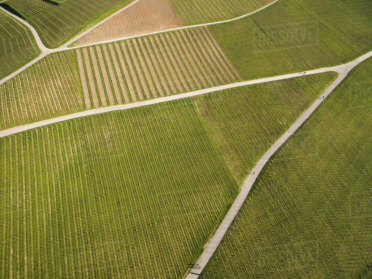 Aerial view of green field with roads, Germany stock photo