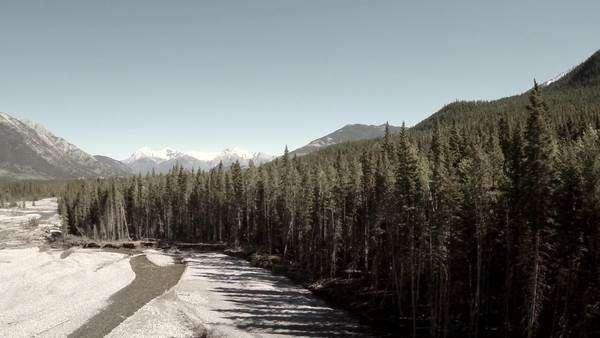 Tilting extreme wide shot of a forest in the snowy mountains Royalty-free stock video
