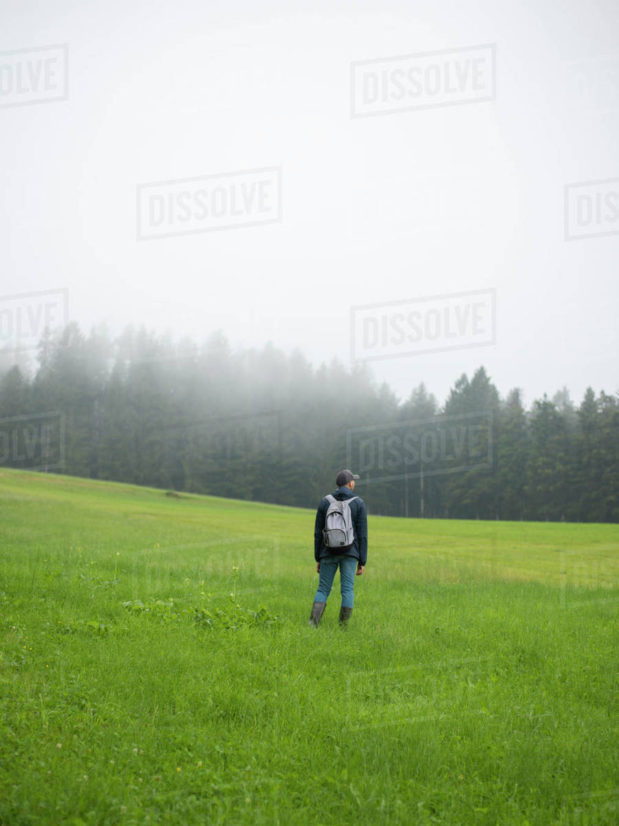 Man standing in field looking away in foggy forest Royalty-free stock photo
