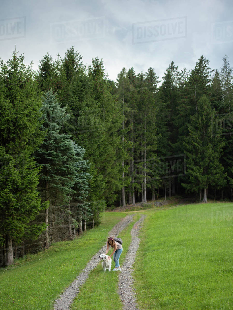Woman standing and petting the dog during walk in forest Royalty-free stock photo