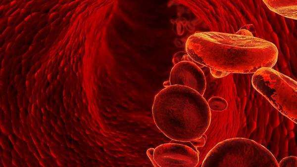 3D blood cells in vein Royalty-free stock video
