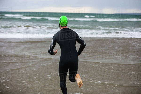 d403055d3bb Rear view of athlete in wet suit running on the beach Royalty-free stock  photo
