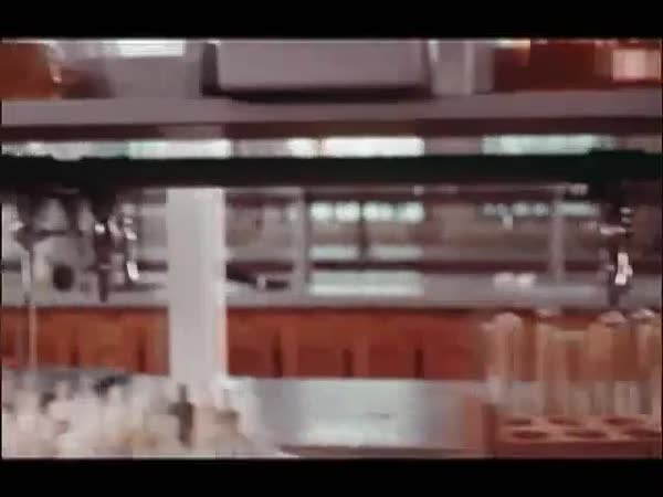 Tracking shot of snakes and tools in laboratory Royalty-free stock video