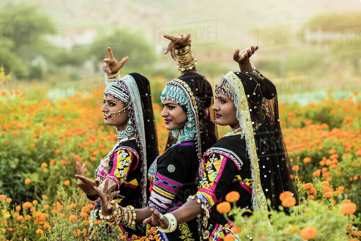 Local dancers in a marigold farm in Pushkar, Rajasthan, India, Asia Royalty-free stock photo