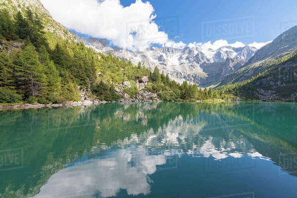 Rocky peaks and woods are reflected in Lago Aviolo, Vezza d'Oglio, Camonica Valley, province of Brescia, Lombardy, Italy, Europe Royalty-free stock photo