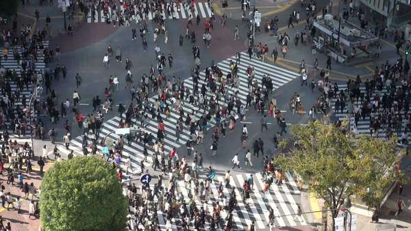 Shibuya crossing in Tokyo Royalty-free stock video