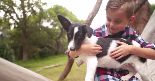 Closeup of cute rascal boy who gives his puppy a big hug. The child and his best animal friend sitting on a log in nature Royalty-free stock video